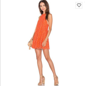 NBD Lace Overlay Halter Mini Dress